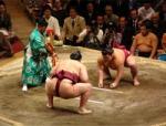 Pesona-Alam-dan-Budaya-Jepang